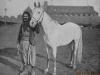 Syrian_man_with_Arabian_horse_1893