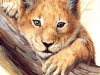lion_cub_by_asemo