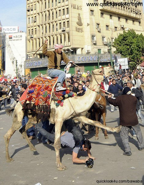 Pro Mubarak forces cavalry charge democracy protesters