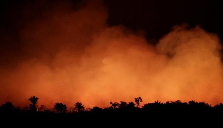 حرائق غابات الأمازون المرعبة ومعجزة إلهية تتدخل