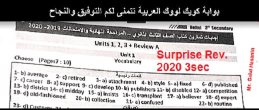 surprise-3sec-2020-rev