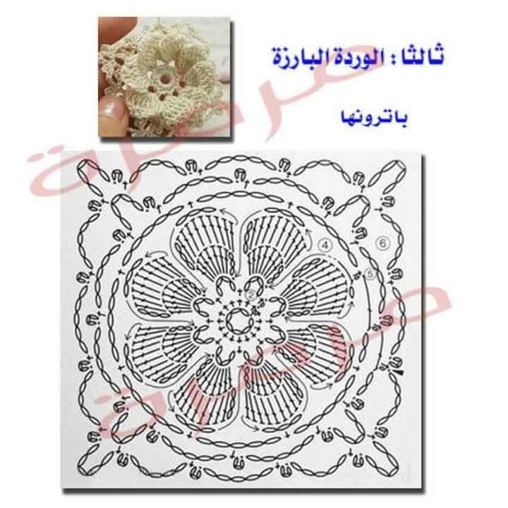 MjE3MTE2MQ5757FB_IMG_1482606720197