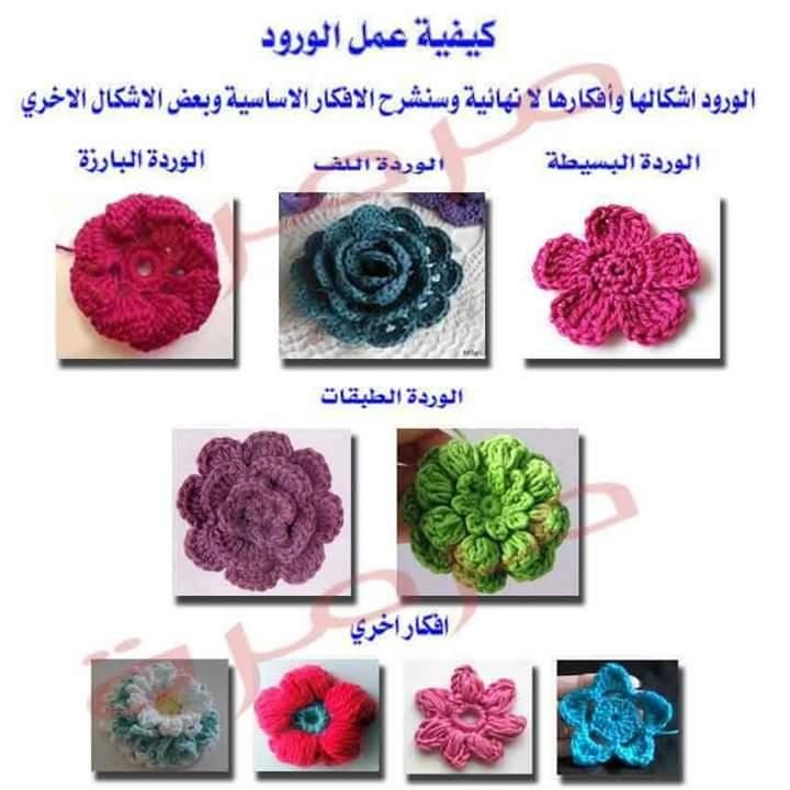 MjY5NTU4MQ9898FB_IMG_1482606749736
